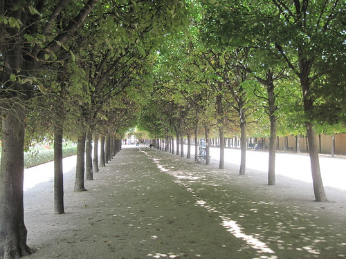 Pathway in Tuileries