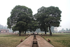 The Trees (cmac66) Tags: park trees india delhi redfort redfortdelhi frozenmotion cameronmacmaster froznmotion