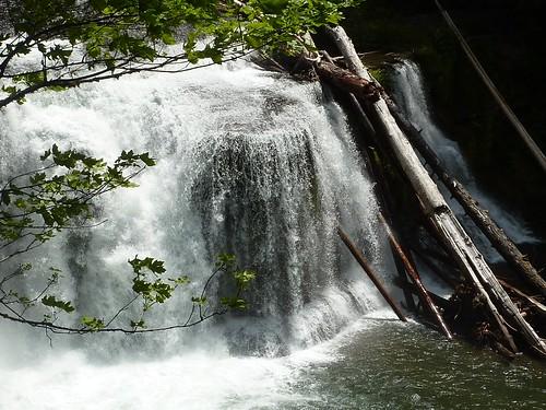 lower falls 2