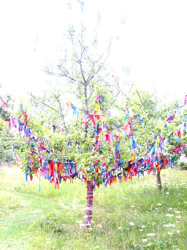 Wishing Tree @ Nunnington Hall 7/7/11