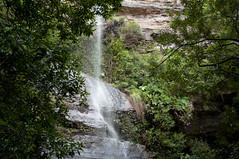 Vera's Grotto (stevesheriw) Tags: australia bluemountains bluemountainsnationalpark newsouthwales katoomba unesco worldheritagesite scenery view landscape trail hiking bushwalking forest furbersteps waterfall verasgrotto katoombafalls