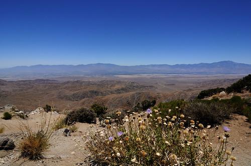 Keys View in Joshua Tree National Park