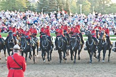 The Charge (Tawaw) Tags: horses canada flag ottawa police rcmp equestrian mountie stetson mounties mountedpolice royalcanadianmountedpolice rockliffe policehorses musicalride redserge sunsetceremony thecharge canadianpolicecollege
