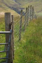 Into the distance, Catacol, Isle of Arran (shotlandka) Tags: field grass fence scotland dof arran isleofarran catacol canoneos500d  mygearandme   ringexcellence