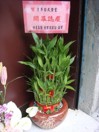 彥亭日式食堂。台北市中正區寧波西街76號 (12)