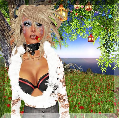 Snapshot_015 copy_phixr