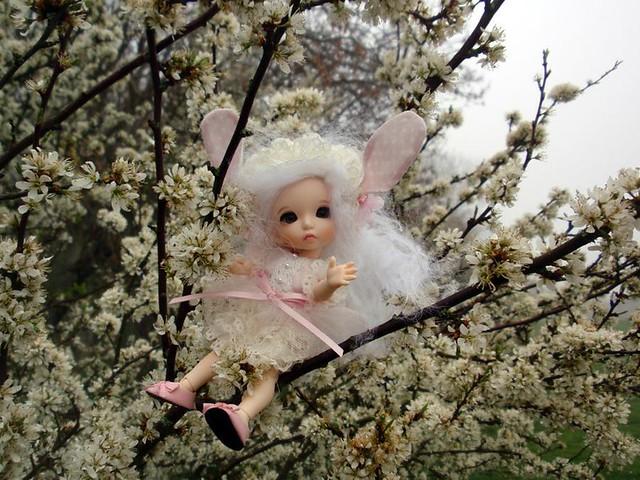 Bonnie, Pukifee de Fairyland, d'Inma 5942176493_8d469d5aca_z