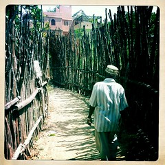 Shela alleys - Lamu Kenya (Hipstamatic) (Eric Lafforgue) Tags: africa apple island kenya culture tribal application unescoworldheritagesite unesco tribes afrika tradition tribe lamu ethnic app tribo swahili afrique iphone ethnology tribu eastafrica 2024 qunia lafforgue ethnie  qunia    kea   tradingroute hipstamatic a