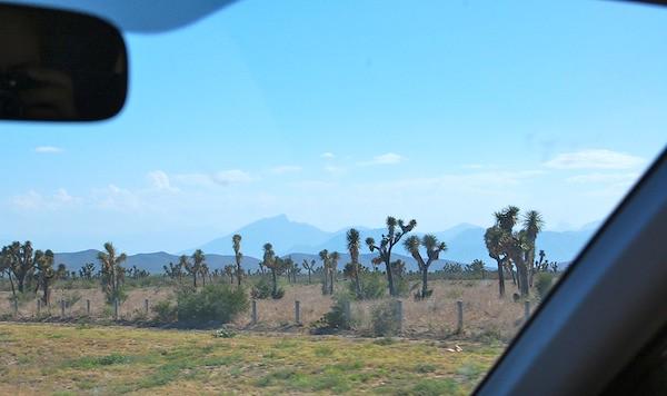 camino a Monterrey