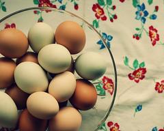 bowl of eggs (lydiafairy) Tags: brown green colorful fresh eggs fresheggs farmfresh