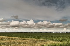 Hazerswoude Dorp (Amsterdam Today) Tags: panorama netherlands dutch field weather rural landscape view flat pentax cloudy  nederland
