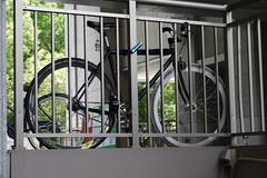 Kyoto University Bicycle