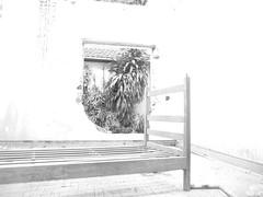 P1080706 (Juliano Fernandes) Tags: casa italia saopaulo grafiti edificio centro noite tiradentes fotografia marginal abandonada saofrancisco construcao terminalbandeira