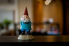 Roaming Gnome (Blend Interactive) Tags: southdakota downtown webdesign sd siouxfalls blend webdevelopment newoffice downtownsiouxfalls blendinteractive boycegreely