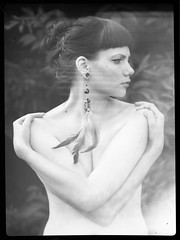 feathers (Lma) Tags: portrait bw film girl analog iii kristina feather large iso linhof format 100 analogue asa 9x12 schneider f12 2011 fomapan technika 265mm miletics lma spottr2011