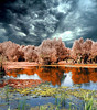 the pond (gulgulas) Tags: red sky reflections pond menacing reflexions naturepoetry colorphotoaward outstandingromanianphotographers