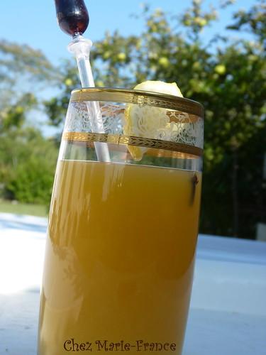 Cocktail du singe de Brétignolles à base de trousseminette et de rhum