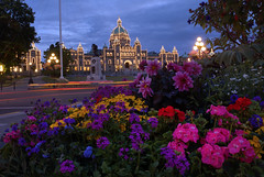 The Essence of Victoria (Brandon Godfrey) Tags: city pink flowers blue light red urban canada building colors yellow night landscape photography lights twilight scenery colorful colours bc purple britishcolumbia capital scenic violet trails parliament victoria tourist vancouverisland hour destination colourful legislature hdr highdynamicrange