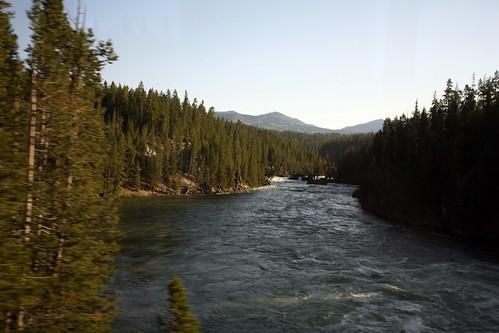 Day 5  @ Yellowstone
