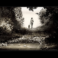 Walking the Dog (h.koppdelaney) Tags: life wood light dog art fall digital forest photoshop walking october symbol path hunting goddess picture philosophy september hund chase metaphor artemis psyche jagd symbolism psychology spaziergang archetype gttin jger erzhlung idream thelittledoglaughed koppdelaney truthandillusion