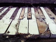 The Old Piano (Little Black Books) Tags: urban music abandoned vintage keyboard antique piano jazz pianist exploration oldpiano antiquepiano oldkeyboard eldel777portfolio