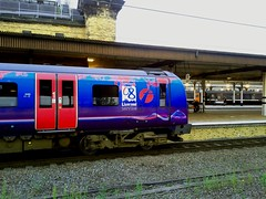 Transpennine At York (cowrin) Tags: york train rail railway express transpennine liverpool08