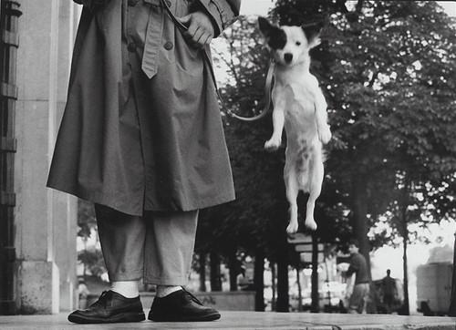 Elliott Erwitt, Paris, 1989