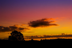 Wentworth Falls Sunset (edwinemmerick) Tags: pink sunset sky 20d silhouette yellow clouds canon eos colours purple australia bluemountains nsw edwin wentworthfalls emmerick edwinemmerick