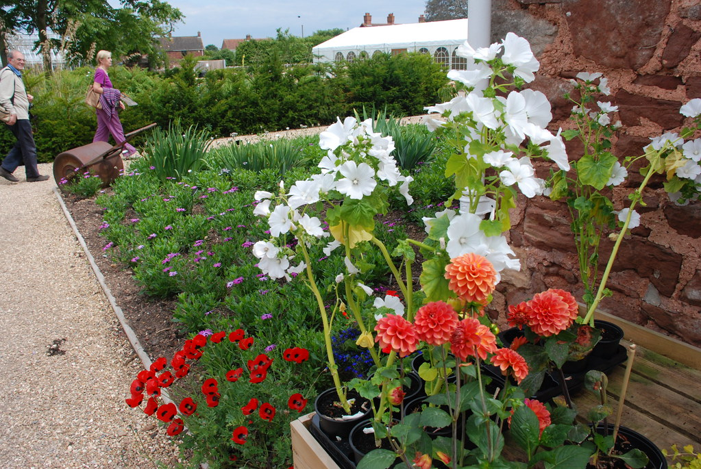 gardens in town
