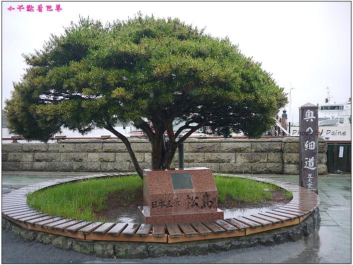 仙台松島遊船餵海鷗-06.jpg