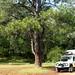 Rest Area, lugar para mais um acampamento
