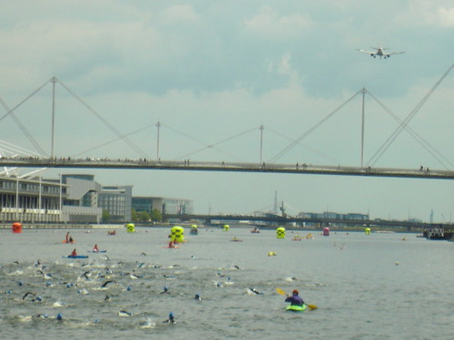 Charity swim in the Thames