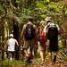 A caminho de uma aldeia indigena