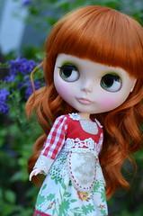 Am I Daisy? 3