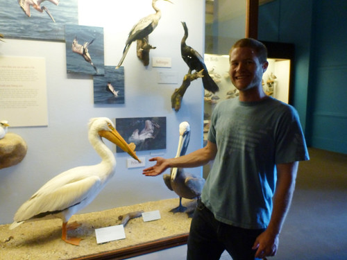 Me and Pelicans