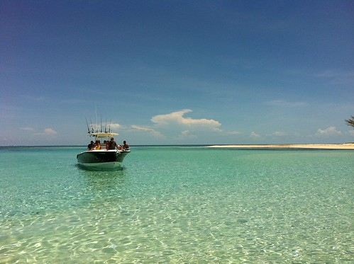 stingrays bimini vacationing honeymoonharbor miamiboating