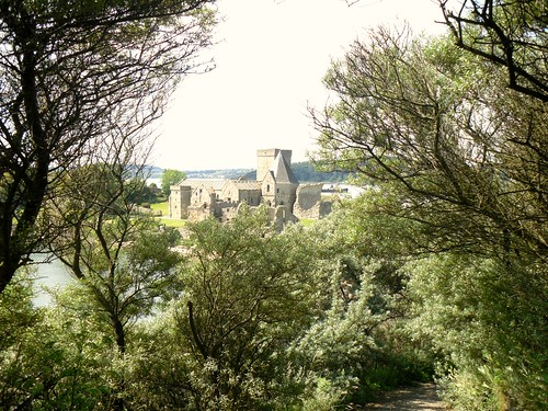 Inchcolm Abbey Framed by Trees