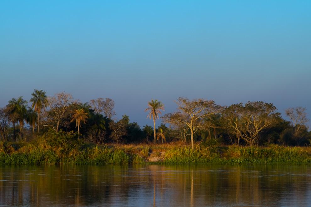 Atardece a orillas del río en una playa desierta en medio de la calma, el silencio y la increible vegetación. (Tetsu Espósito)