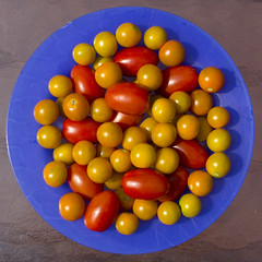 tomatoes (woodleywonderworks) Tags: blue red summer food orange sun color fruit dinner garden circle cherry gold backyard sweet tomatoes grow plate vegetable delicious eat round vegetarian squaredcircle img3845