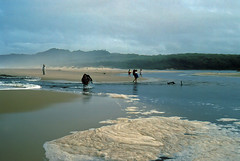 Thurra River crossing, 1985 (NettyA) Tags: ocean park sea film beach rain 35mm river easter coast sand flood hiking australia slide victoria national bushwalking scanned 1985 seafoam gippsland croajingalong bushwalkers thurra croajingolongnationalpark janettetomsett