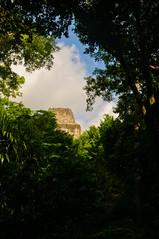 Tikal-25