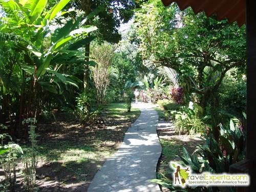 Hiking tour in guanacaste costa rica