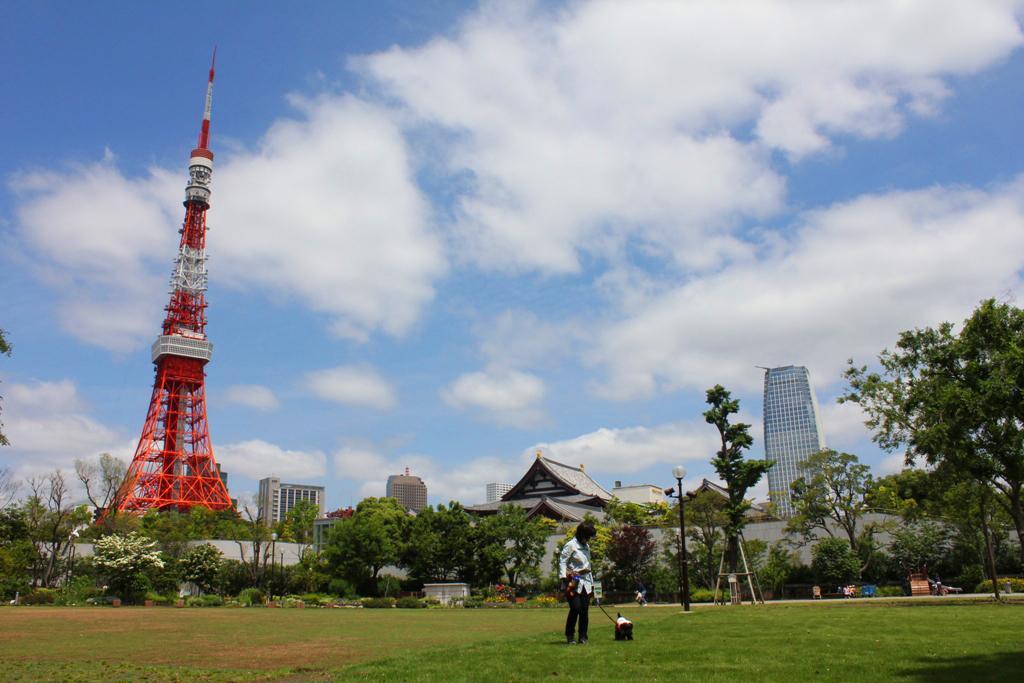 TamachiHamamatsucho Walking Guide (7)