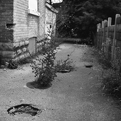 Diary of a Contact Sheet (Time Share) Tags: city people urban blackandwhite bw ontario canada 6x6 blancoynegro film monochrome analog walking blackwhite walk 120format citylife streetphotography streetlife pedestrian canadian bn boring d76 usual hasselblad urbanexploration bland normal everyday exploration conventional theeveryday drab ordinary runofthemill mediocre hohum commonplace banalities selfdeveloped filmphotography urbanfragments ilovefilm insignificant d7611 unremarkable canadianeh aristaeduultra100 undistinguished unimpressive autaut theordinary carlzeissplanart80mmf28 aristaeduultra100d76 thisissofuckingordinaryitmightjustbeinteresting cantheordinarybeinteresting shotsofnothing theunexceptional bwfp