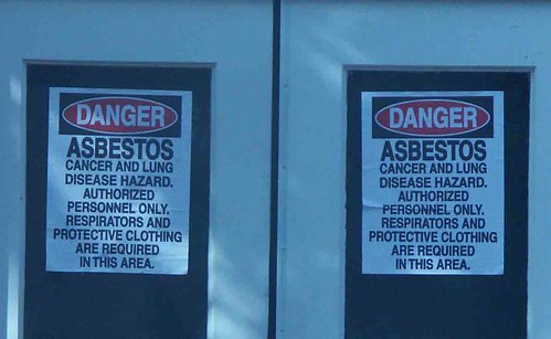 evangeline-asbestos