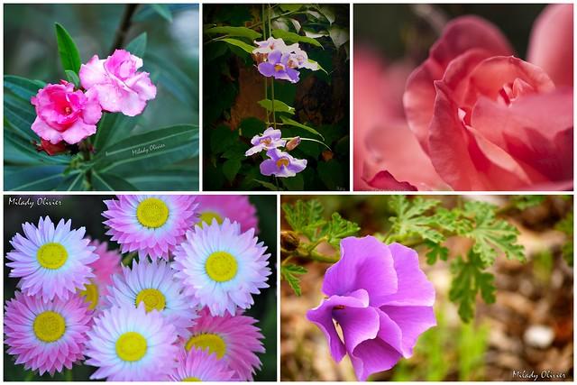 Mosaico Flores 4