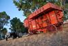 Antica Trebbiatura (a.perilli) Tags: trattore carra contadino trebbiatrice fordsonmajor trebbiatura agricoltore antiquariatoagricolo mietitrici trebbiatrici