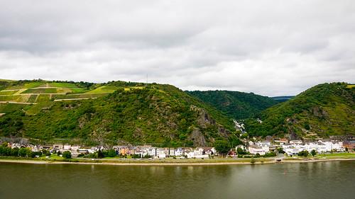 A view of the Rhine River // Burg Rheinfels