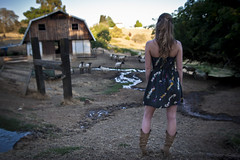 Anshley Back at the barn (Donni Mac) Tags: ranch blue trees sky water girl yellow barn fence cowboy pretty hand dress sheep post boots bokeh farm ashley young blond short standard herder donnimac