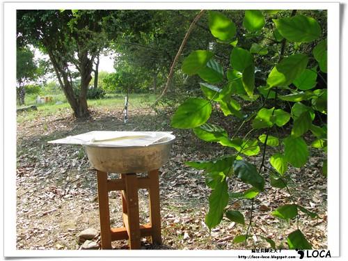 記憶的寶藏-2011關渡國際自然裝置藝術季IMG_8235.jpg